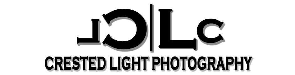 CrestedLightPhotography.jpg