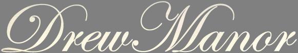 DM-Logo-silver2.png